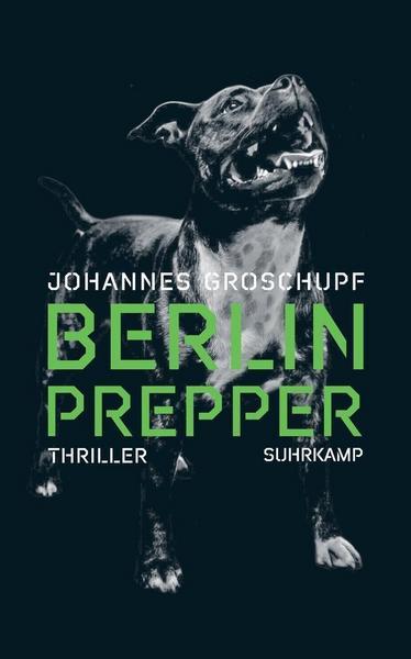 Cover Berlin Prepper von Johannes Groschupf