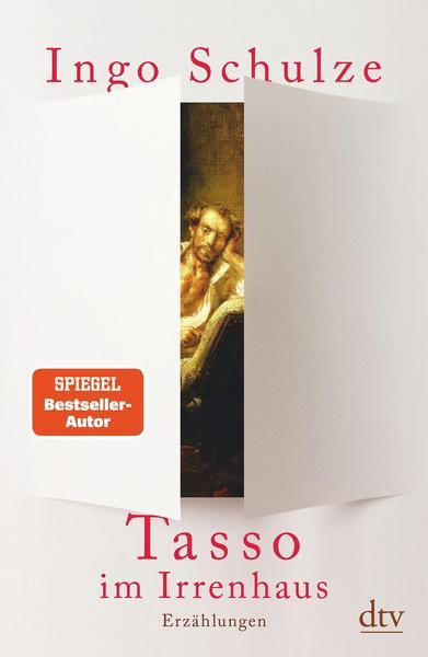 Cover Tasso im Irrenhaus von Ingo Schulze